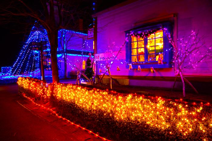 伊豆半島中伊豆の伊豆市修善寺虹の郷のクリスマスナイトのツリー